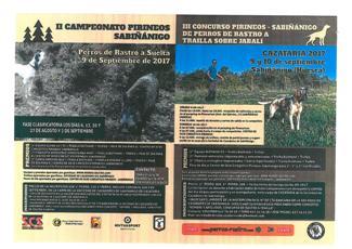 CAMPEONATO DE PERROS DE RASTRO A SUELTA-1